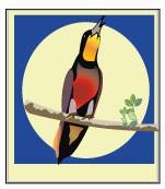 ícone Amapá