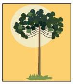 ícone Paraná