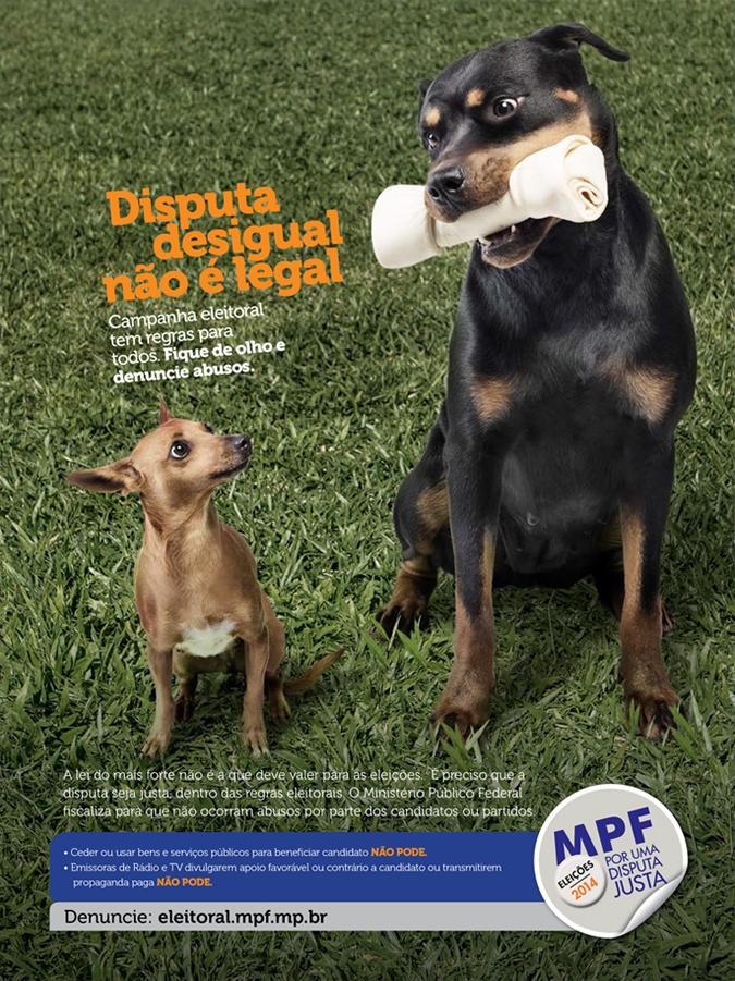 Eleições 2014  - cão