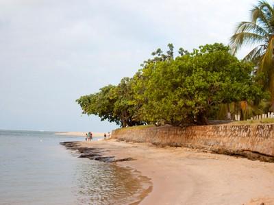 Praia do Gunga (2). Foto: Francisco Barros