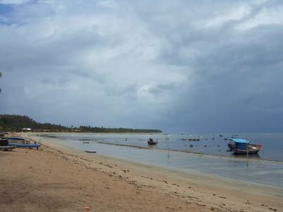 Praia de Japaratinga. Foto: Telma Elita