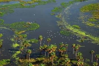 Belezas naturais de Roraima. Foto Jorge Macedo, Detur
