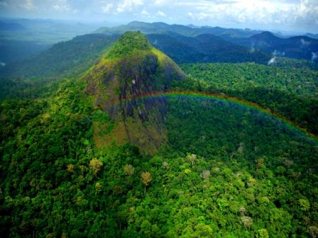 Parque Nacional das Montanhas do Tumucumaque (serras e arco-íris). Foto Zig Koch