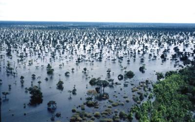 Índios javaés e karajás habitam a maior ilha fluvial do mundo, a Ilha do Bananal, formada pelos rios Javaé e Araguaia. Foto: Márcio Di Pietro