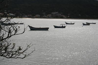 Praia da Armacão, em Florianópolis. Foto: Lucênio Zanoni